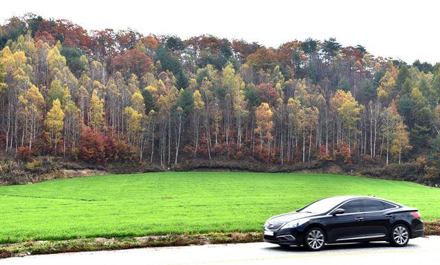가을색 향연 수묵화빛 겨울…안반데기
