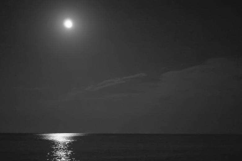 한여름 밤의 꿈같은 화진포