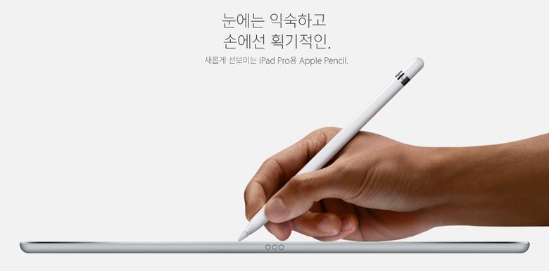 아이패드 프로(iPad Pro) 출시