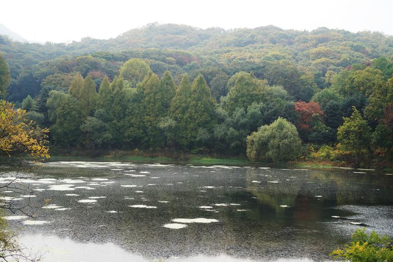 동물원을 물들인 가을