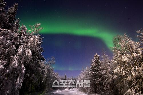 북극 하늘에 빛의 향연을 펼치다, 핀