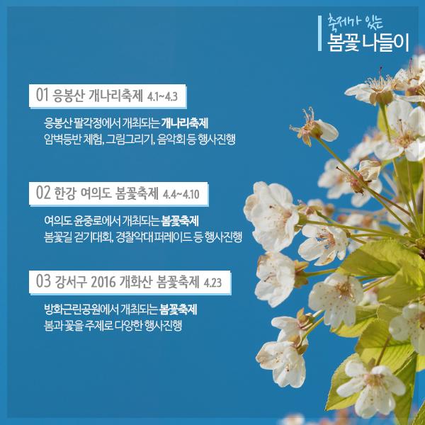 봄꽃으로 물든 서울의 길 서울 봄꽃