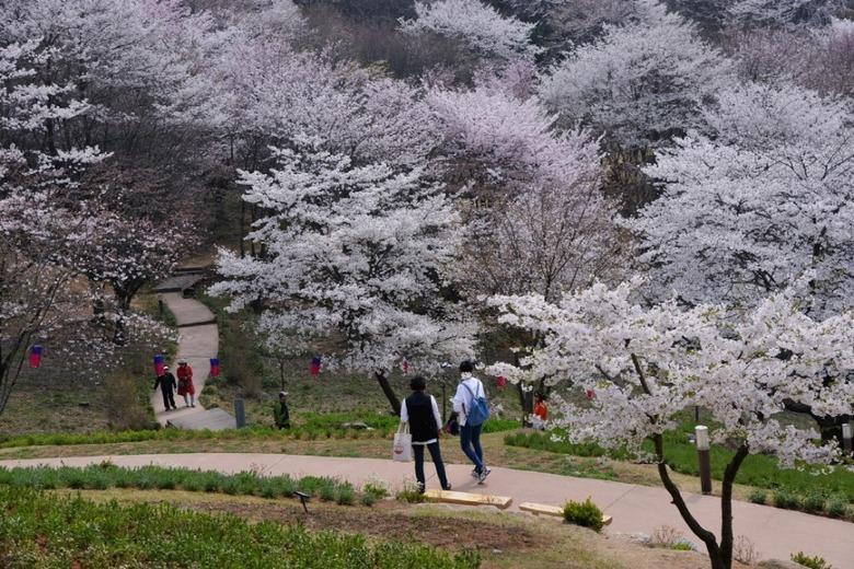 누구나 쉽게 걸을 수 있는 서울의 보