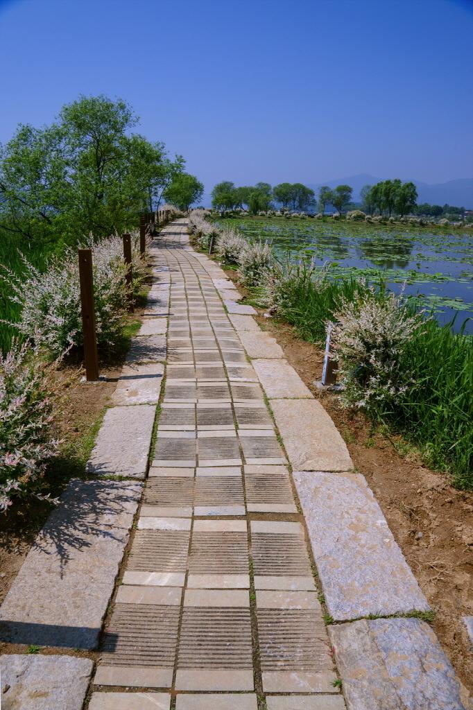 강물과 친구 되어 함께 걷는 길 -