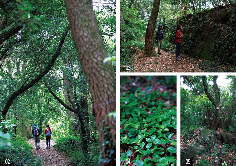 제주 사람들의 삶을 따라 걷는 숲