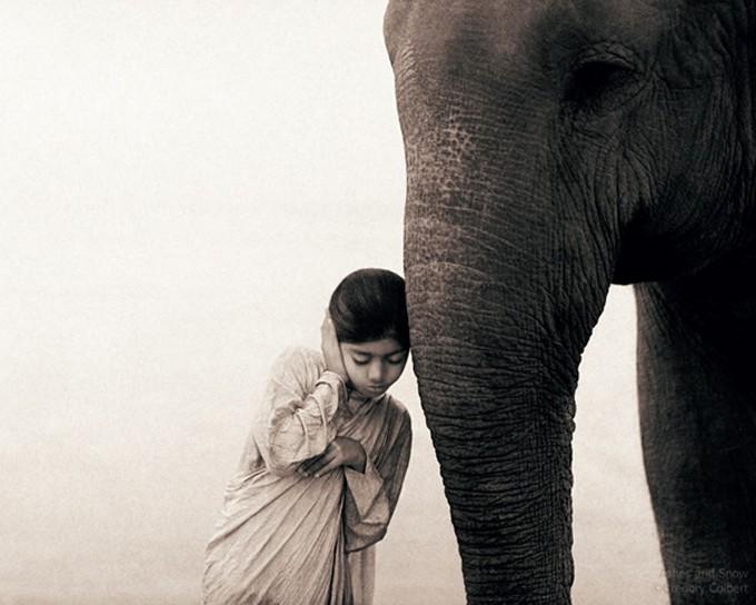 사람과 동물의 공존 Uninhibit