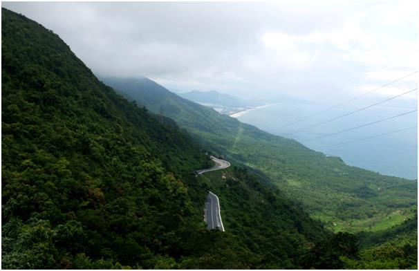 '고흐 옐로'에 빠지다… 베트남 호이