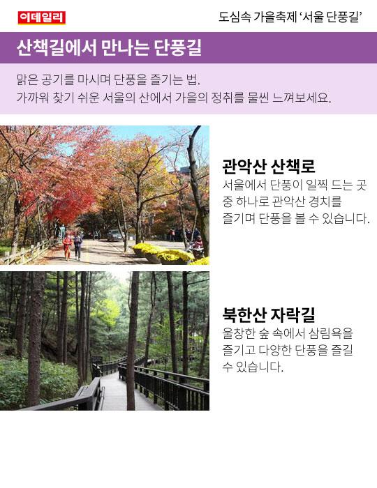 도심속 가을축제, 서울 단풍길