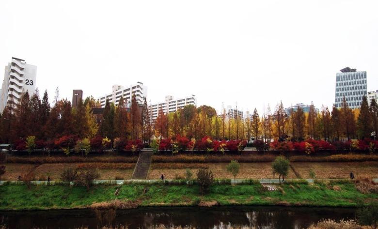 가을을 완성하는 네 가지 풍경