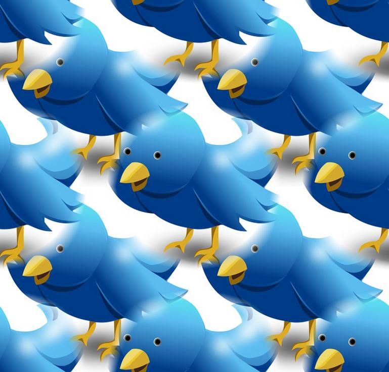 트위터, 마이크와 플랫폼의 차이