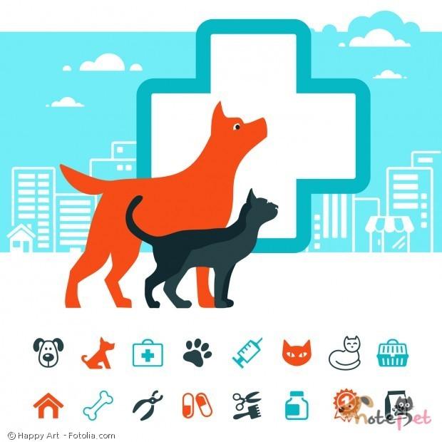 강아지 예방접종의 종류