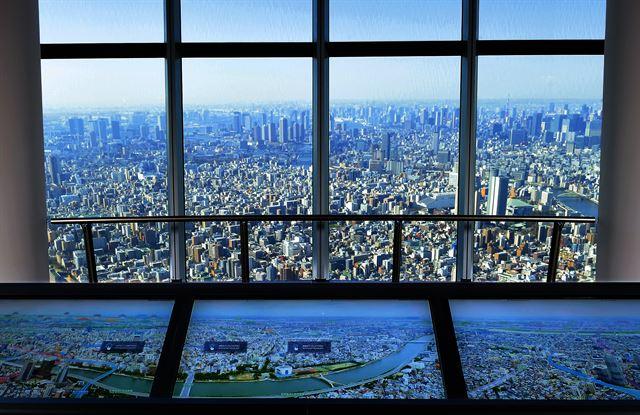 전통과 모던… 벚꽃 융단 도쿄 도심