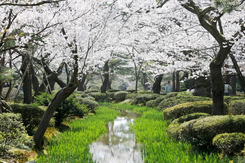 향수를 머금은 유네스코 창조도시 일본