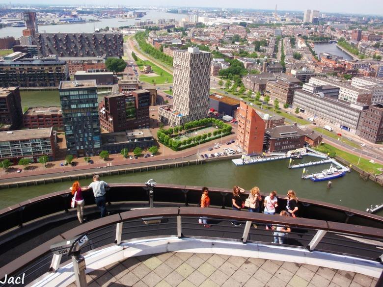 디자인으로 다시 태어난 도시, 네덜란