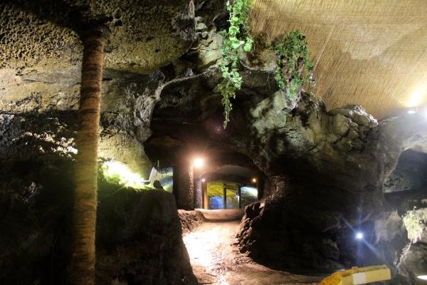 그곳에 동굴이 있었다