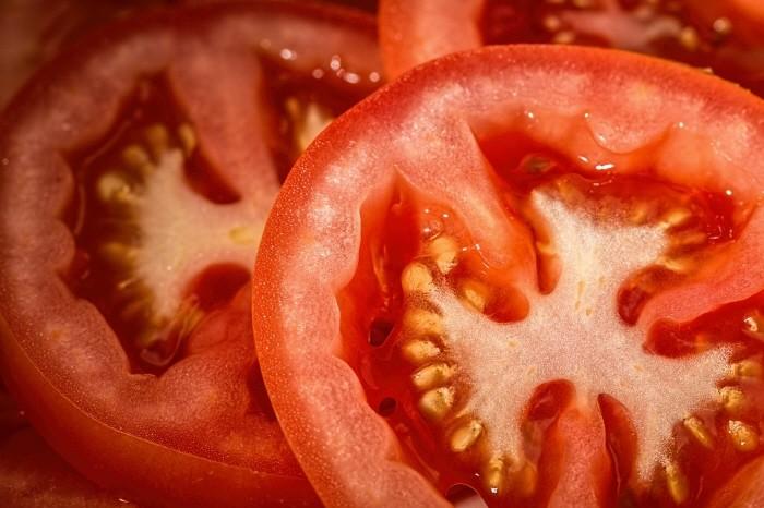 토마토는 공포의 음식이었다