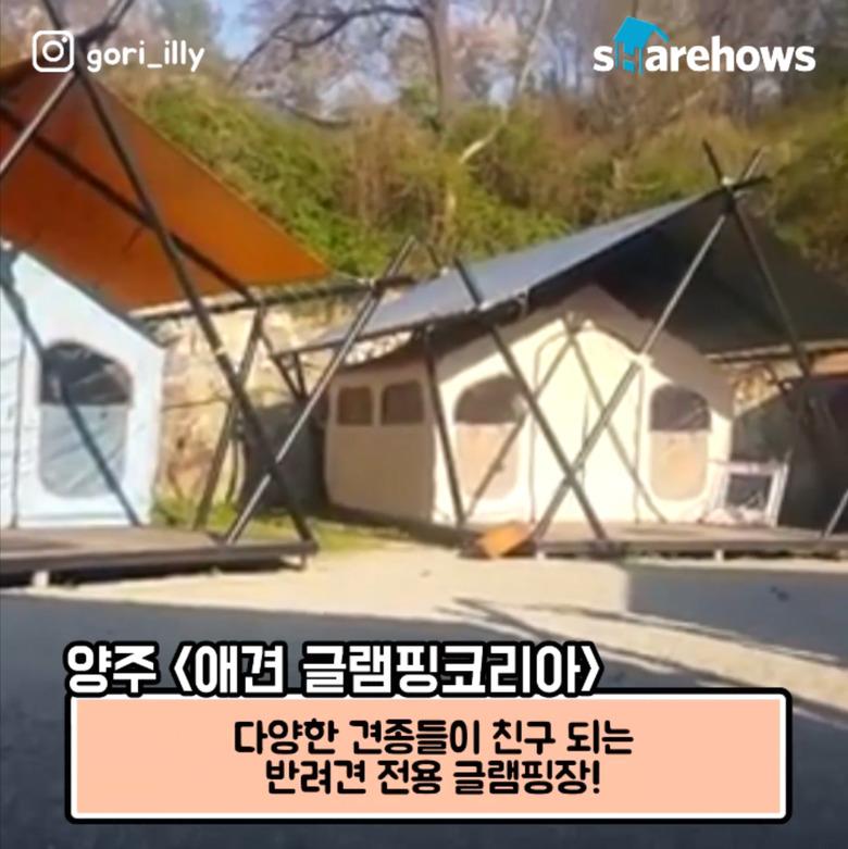 내일 당장 떠날 수 있는 서울 근교