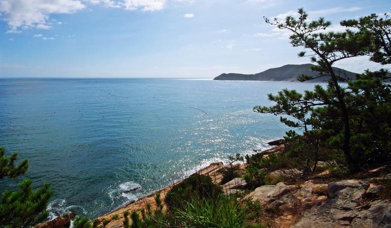 바다와 숲, 마을이 만든 맑은 풍경