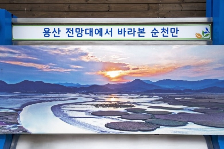 대한민국 생태수도길