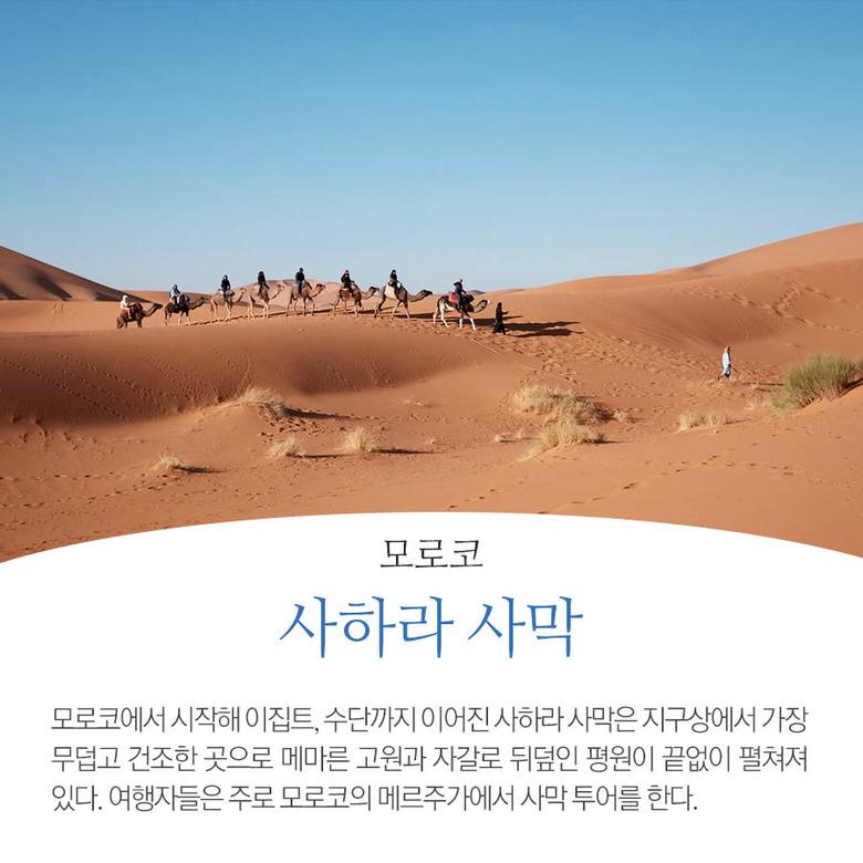 전세계 사막 여행