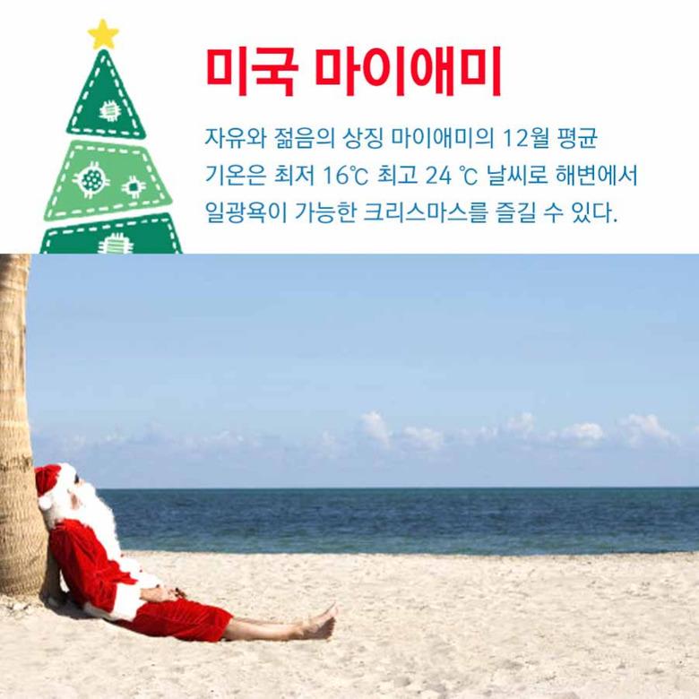 겨울 싫은 사람 주목! 썸머 크리스마