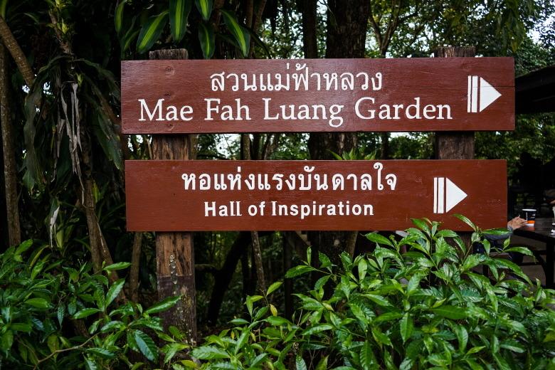 태국 북부를 여행한다면, '도이퉁'