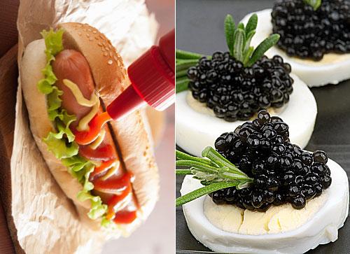 나라별로 금지한 음식 10가지, 도대