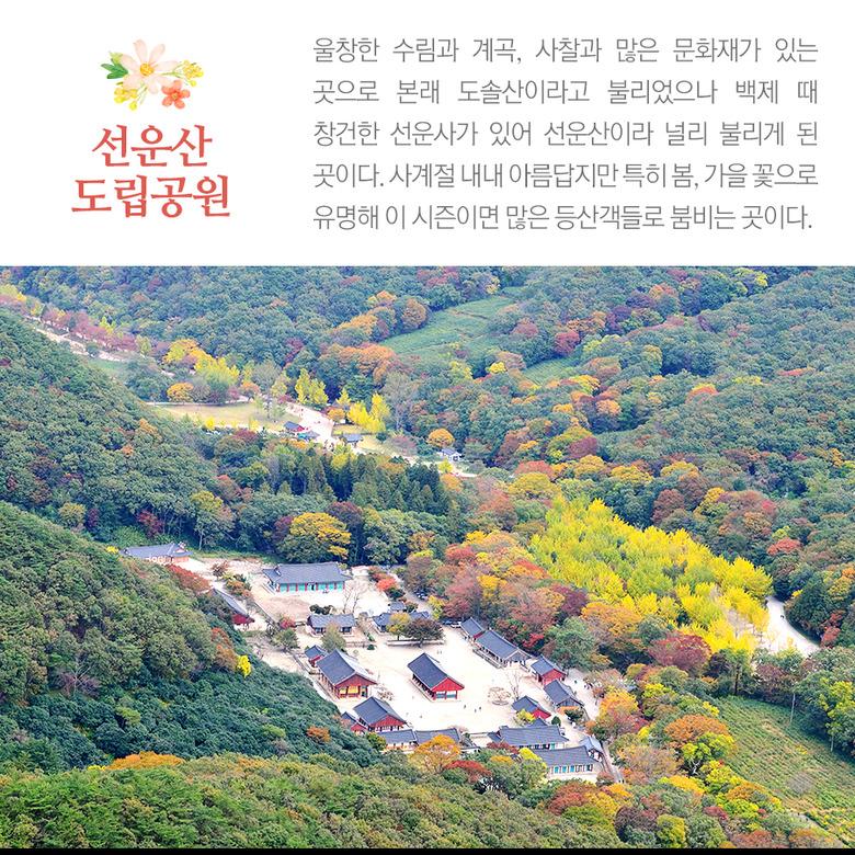 전북 고창 선운산 도립공원
