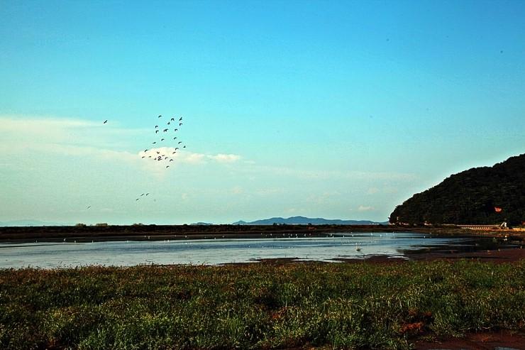 새들의 낙원 불음도 풍경