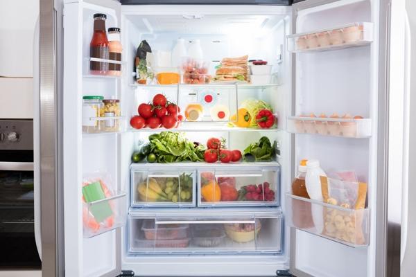 여름철 음식보관, 냉장 vs 냉장도
