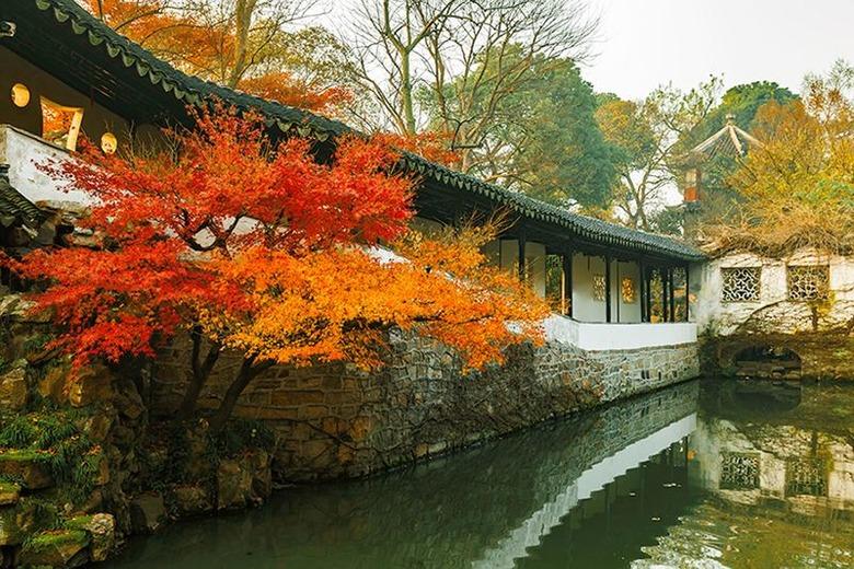 기차로 떠나는 올 가을 중국의 단풍여