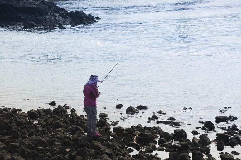 제주 바다낚시 포인트, 다양한 어종에