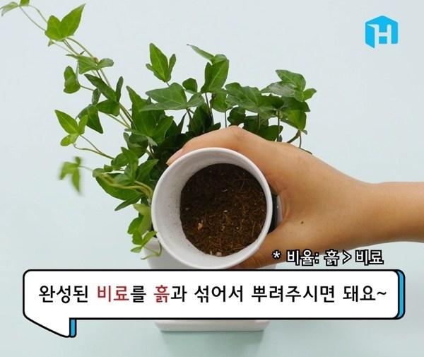 음식물 쓰레기로 천연비료 만드는 방법