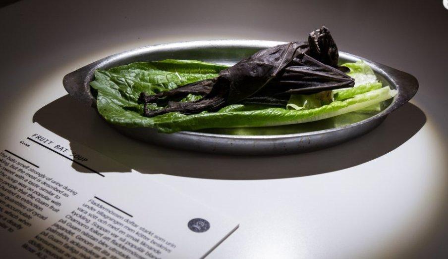 '혐오 음식 박물관' 말뫼에 개관해.
