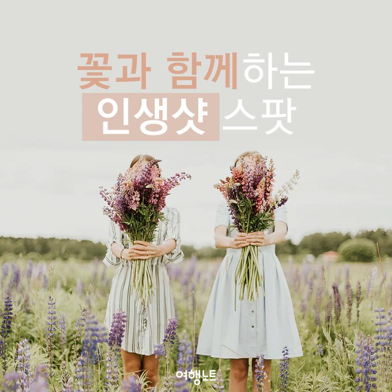 여심 저격! 꽃과 함께하는 전세계 인