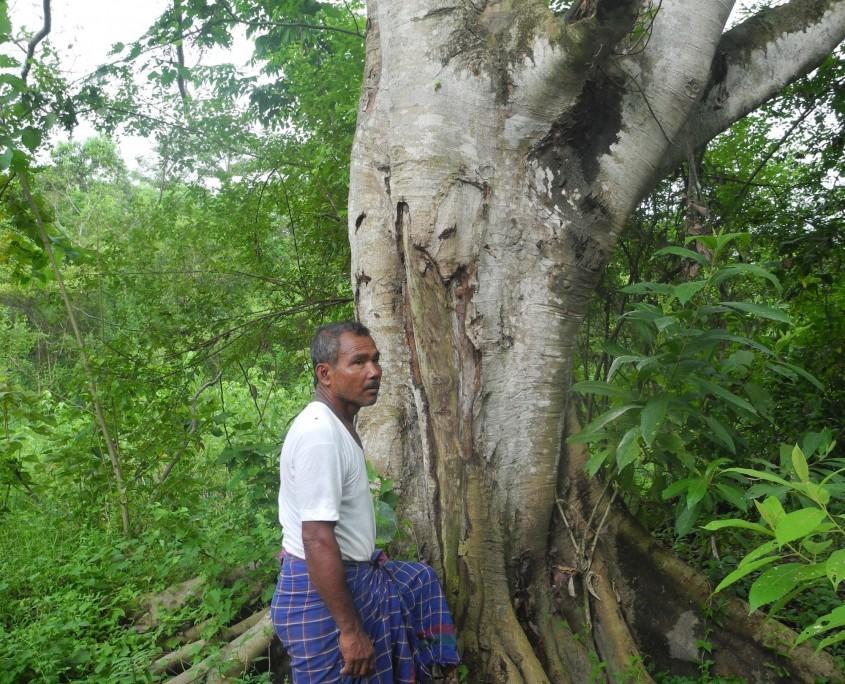 황폐한 땅이…40년 간 나홀로 나무