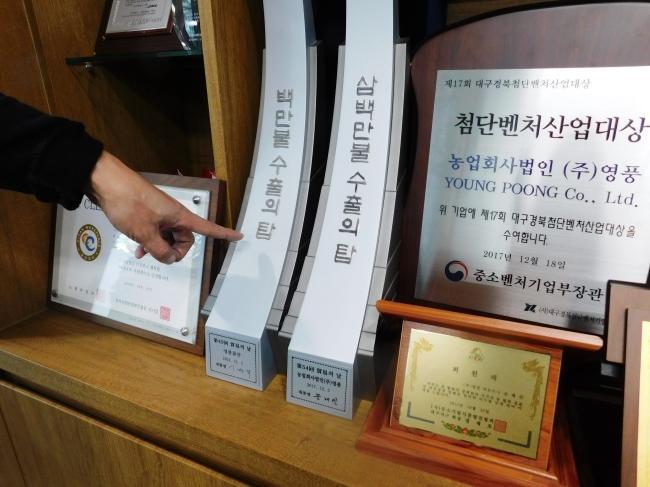 영풍은 작년에 수여받은 한국무역협회(KITA)의 '300만불 수출의 탑'에 이어 올해말에는 '500만불 수출의 탑'을 수상한다.