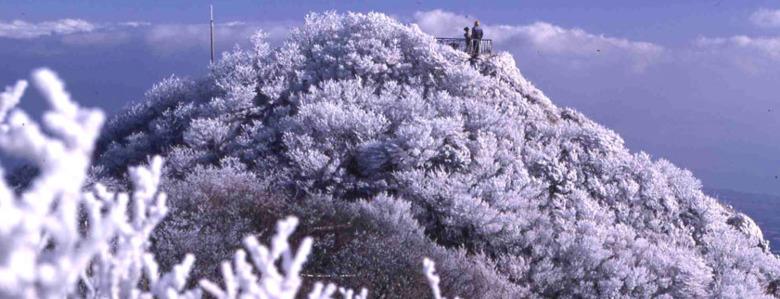 추위에 움츠린 오늘, 나가사키 온천에