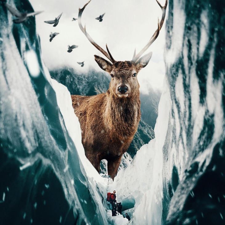 거대한 동물 이미지를 통해 대자연과