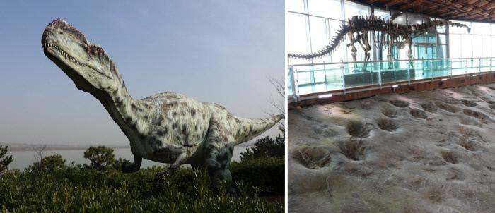 공룡들이 뛰놀던 곳… 천년 고찰은 묻