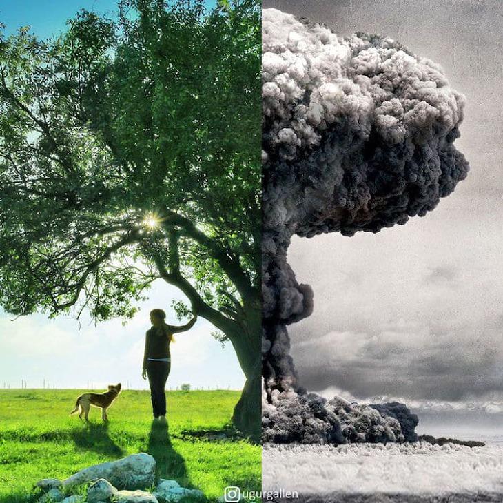 서양과 중동의 현재와 현실을 담은 비