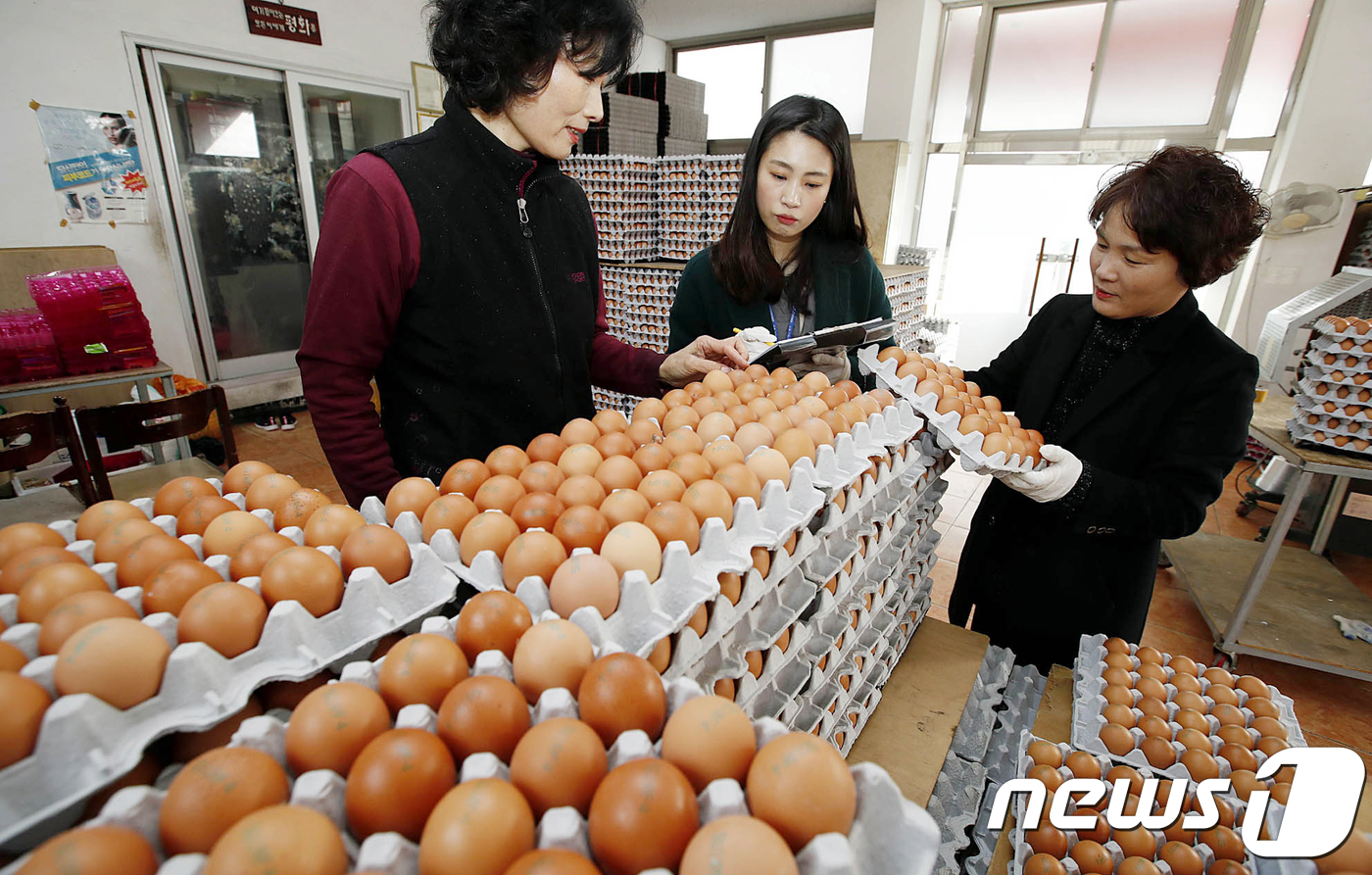 """""""달걀 한 판이 모두 쌍란""""… 주부의"""