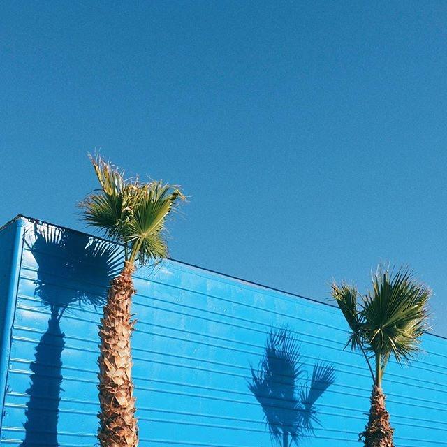 캘리포니아 로드트립, 데스밸리, 모하