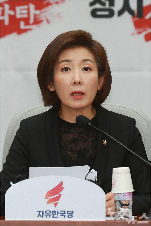 """정동영 """"나경원 종전선언 반대, 北"""