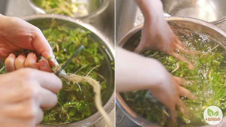 냉이밥 하는법 봄향기 가득 춘곤증을