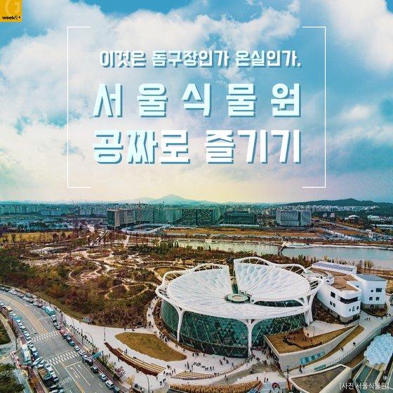이것은 돔구장인가 온실인가, 서울식물