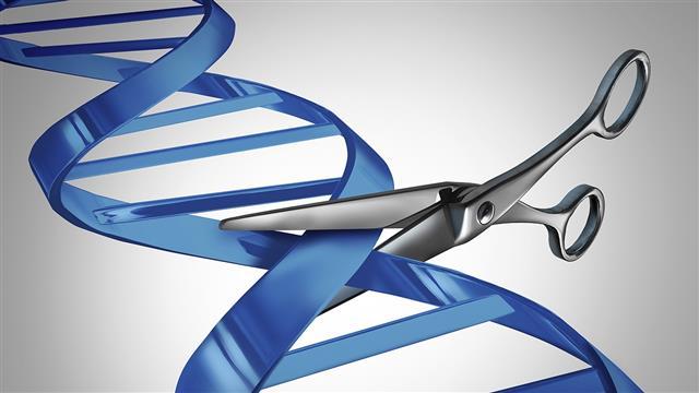 '유전자 가위질'로 아기 탄생… 넘지