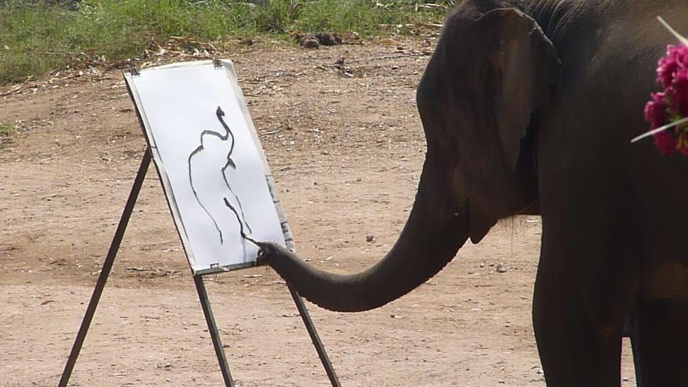 코끼리가 그린 코끼리