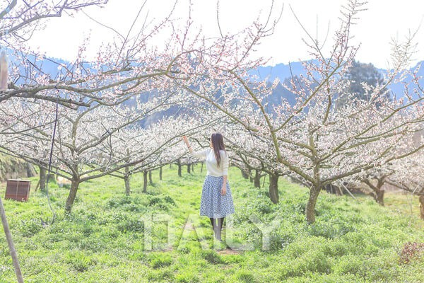 블로거 3인이 알려주는 후쿠오카 여행
