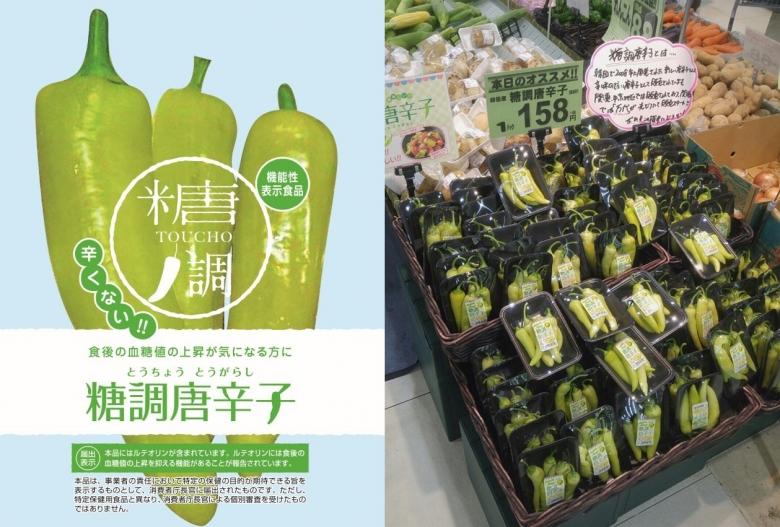 일본에서 기능성 표시 식품으로 등록된 한국의 당조고추(좌) [사진=aT]